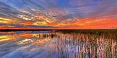 Basic Information - Everglades National Park (U.S. National Park ...
