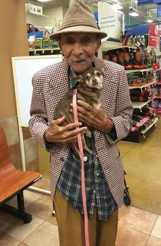 """World War II Vet And Scared Chihuahua Find True Love, Together """"She wouldn't take her eyes off of him, and he wouldn't stop smiling at her"""""""