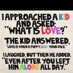 Yep.....love that feeling when I come home and they come just a running, wagging their little tails and giving lotsa puppy kisses......