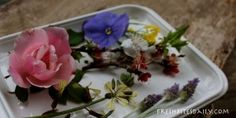 """Your edible flower starting point (salads, syrups, oils and a tale of the """"loco weed"""")"""