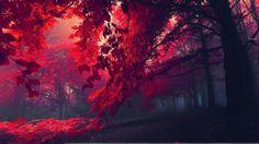 beautifulhdwallpaperredforest.jpg