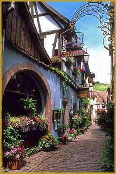 Photo de la rue des Écuries en fleurs, avec ses belles maisons alsaciennes…