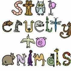 Stop Cruelty To Animals and torturing  them also for Testing.  Support Beauty Without Cruelty.