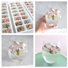 DIY: FLORAL ICE CUBES - Sweets and Celebrations