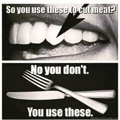 """So you can stop with the """"top of the food chain"""" excuse for eating meat #vegan #vegetarian"""
