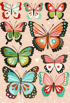 No need to find shadowboxes or pins for this butterfly collection - this butterfly wall art is perfect for the aspiring collector. All canvas wall art is printed in the USA. Butterfly Wall Art, Pink Butterfly, Butterflies, Butterfly Illustration, Illustration Art, Daisy Art, Painting Prints, Art Prints, Guache