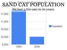 Sand Cat Population - Bing images Sand Cat, Bing Images, Chart