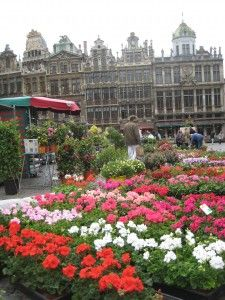 One of the many Things to See and Do in Brussels, Belgium - visit the daily flower market on the Grand Place