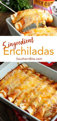 These quick and easy enchiladas only call for 5 ingredients and are ready in no time! @BordenCheese adds creamy texture, delicious flavor, and packs them with protein! #sponsored #recipe #southernbite #enchiladas #easy #quick #weeknight