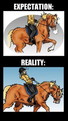 Hevonen roikkuu taas luotilinjan alapuolella? Takajalat laahaavat laiskasti perässä ja selkäkin on notkolla? Mitä tapahtuu, kun hevonen on etupainoinen? Mitä ongelmia siitä aiheutuu? Ja ennen kaikkea, mitä ongelmalle voi tehdä?