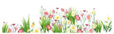 Flowers and Grass PNG Picture Clipart
