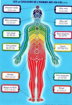 Le Reiki, Reiki Chakra, Les Chakras, Yoga Chakras, Health Practices, Mind Body Soul, Spiritual Life, Tantra, Yoga Meditation