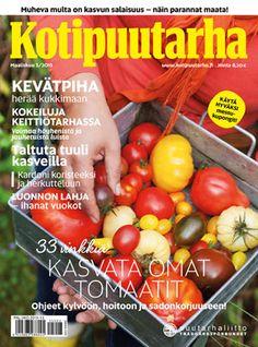 KOTIPUUTARHA 3/2015 • 33 vinkkiä tomaatinkasvatukseen • Hurmaavat vuokot • Vitamiinit puutarhasta • Luomupuutarhurin lierotaivas  Lisäksi mm. Keräilijän puutarha täynnä kevätkukkijoita • Kasvata koristeheinät siemenestä • Paranna maata ja kierrätä kasvijäte • Luonnonmukainen kasvimaa • Kardonin kasvatus • Kolmilehdet • Pelargonin pistokaslisäys   http://www.kotipuutarha.fi/lehti/lehtiarkisto/kotipuutarha-3-2015.html