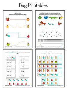 Bug Unit Study Worksheets and Printables