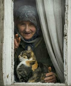 Nice to meet you. Crazy Cat Lady, Crazy Cats, I Love Cats, Cute Cats, Photo Trop Belle, Animals And Pets, Cute Animals, Animal Gato, Old Folks
