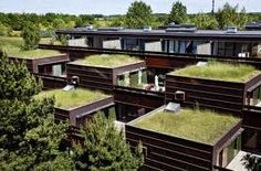 Council flats in Farum (north of Copenhagen) with green rooftops, patios, built-in planters. Love the architectual scheme of the housing project from the 70s. More of that please