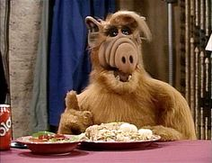 "Alf - I still say ""hey Willie, help me find Lucky"" all the time and nobody ever gets the reference."