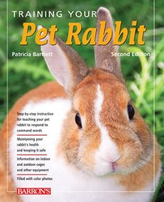 """Right now they respond to """"NO!"""" and """"Bad bunny"""" and shaking a bag that they think is food....i dont think thats what this means though hahaha.   Training Your Pet Rabbit (Training Your Pet Series) « Library User Group"""