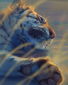 "tamberella: ""Big cat portraits of mine from the last couple of months - Devin Elle Kurtz "" Fantasy Animal, Fantasy Art, Fantasy Paintings, Animal Paintings, Illustrator, Big Cats Art, Tiger Art, Cute Animal Drawings, Horse Drawings"