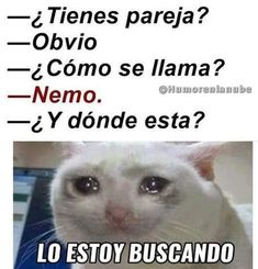 "Top LOL Memes En Espanol Memes That will make you laugh and funny for whole day.So scroll down and read out these ""Top LOL Memes En Espanol"" and i'm sure these ""Top LOL Memes En Espanol"" will make you laugh out loud. Funny Spanish Memes, Spanish Humor, Hilarious Memes, Hilarious Animals, 9gag Funny, Funny Animal, Funny Videos, Crazy Funny, Dating Humor"