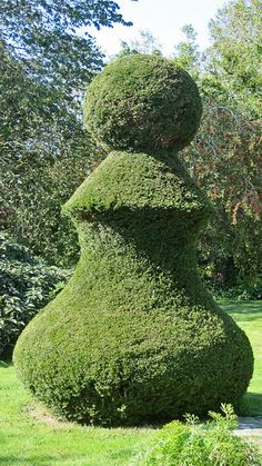 Top Topiary by Pippa Kahn, via Flickr - very strange shape if you ask me ....