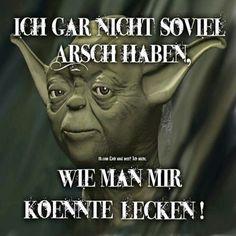 Die 34 Besten Bilder Von Meister Yoda Spruche Screwed Up Funny