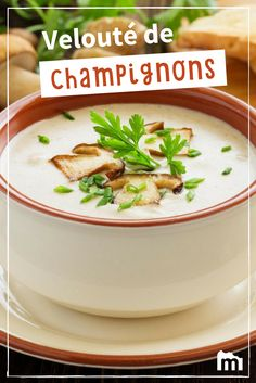 Velouté de champignons #velouté #champignons #recettes #Marmiton Mexican Soup Recipes, Broccoli Soup Recipes, Cream Of Broccoli Soup, Crockpot Steak Recipes, Cooking Recipes, Creamed Mushrooms, Stuffed Mushrooms, Healthy Breakfast Recipes, Healthy Recipes