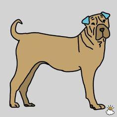 hond-masseren2