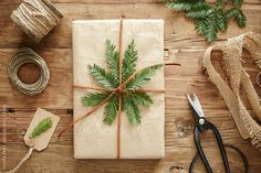Still life of homemade wrapped present with pine branch