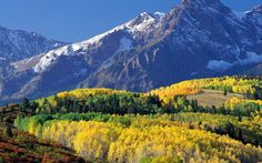 1920x1200 Обои mount sneffels, колорадо, лес, горы, осень