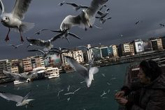Istanbul, Turkey. A woman feeds seagulls from a ferry crossing the Bosphorus