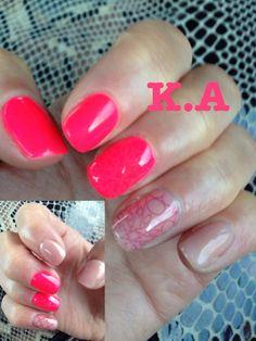 Pink&kashmire