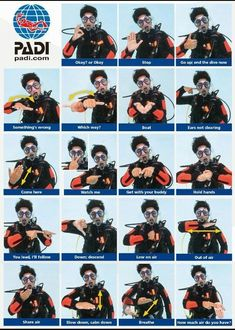 Scuba diving hand signals! Learn this and much more with a PADI certification at Squalo Divers! www.northmiamidivers.com #SqualoDivers #Scuba #Diving #scubadivingvacations