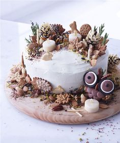 Frances Quinn shows how to create a showstopper cake from the MS Victoria Sponge Cake with chocolate pine cones, edible soil and biscuit animals. Frances says you and your kids can create the biscuits together as a fun activity. Victoria Sponge Kuchen, Beautiful Cakes, Amazing Cakes, Frances Quinn, Bolo Original, Christmas Cake Decorations, Christmas Cakes, Chocolate Christmas Cake, Christmas Birthday Cake