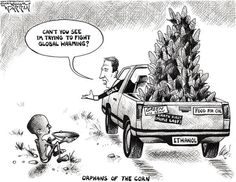 Orphans of the corn by Bob Ellis -- Al Gore as you've always seen him before: Earth first (with him and his elitist friends as proxy) and the little people last.  http://www.dakotavoice.com/2008/12/orphans-of-the-corn/