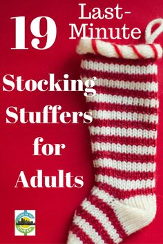 811eedf7e1 71 Best Stocking stuffers for adults images