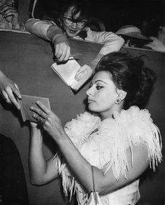 Sophia Loren. Fierce.