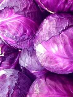 purple vegetables | Red cabbage, a delicious red-purple leafy vegetable.