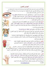 "Résultat de recherche d'images pour ""الحواس الخمسة"" Bullet Journal, Ads, Education, Images, Searching, Teaching, Onderwijs, Learning"