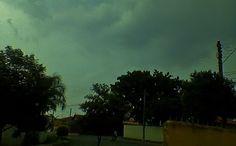 CENAS VERDES  No fim de tarde Um vento sedutor Agita as palmeiras E as copas das arvores Enquanto o céu desce Para a noite chegar, Bruma de meus pensamentos; Cenas verdes.  www.rosejd.blogspot.com.br  Foto: Rose Dias