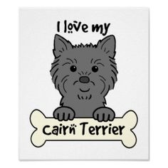 I Love My Cairn Terrier Posters