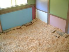BEDDING and LICE!!!!  5 Tips for Chicken Coop Bedding  .........................1. Pine shavings 2. Straw or hay 3. Shredded newspaper  4. Add a little DE  5. What to know about cedar shavings....Some homesteaders like to use cedar shavings because of their pleasant aroma. Cedar wood can collect harmful bacteria and make your chickens more vulnerable to respiratory illnesses and physical ailments.