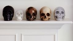 I've long had a fascination with skulls, just the complexity and even beauty of the forms. I've got resin skulls similar to these, that I have in my lovely italian crafted walnut cabinet. I love it.