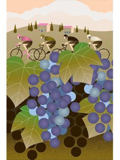 Italia Vineyard - Cycling Poster - Emma Felton - Cycling Photography & Gifts