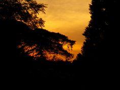 My Photos, Thats Not My, Celestial, Sunset, Outdoor, Outdoors, Sunsets, Outdoor Games, The Great Outdoors