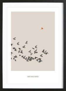 Bird And Birds - Sarah Bühler - Gerahmtes Poster