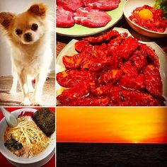 #sunset 沈む寸前‼︎ 子供達が#サッカー の試合頑張ったんでたまには焼肉伴へ☺︎#美味 ‼︎ #family #brother #beer #beef #dog #焼肉 #牛タン #ラーメン #家系 #夕日 #綺麗 #愛犬 #lilo #チワワ #fun #style #サーフィン 今日も #釣り #釣れない ☺︎#飲み過ぎ た…