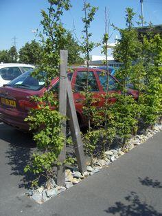 Car Park Design, Parking Design, Parking Lot, Car Parking, Public Spaces, Urban Design, Landscape Architecture, Farm House, Stones