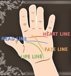 Palm Reading Demystified: A Beginner's Guide (Part 2) In the second of the two-part series on palmistry, we learn how to interpret each line on the palm and understand its implications.