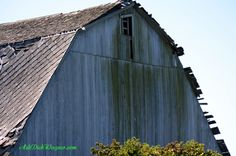 How sad to see these old broken down barns